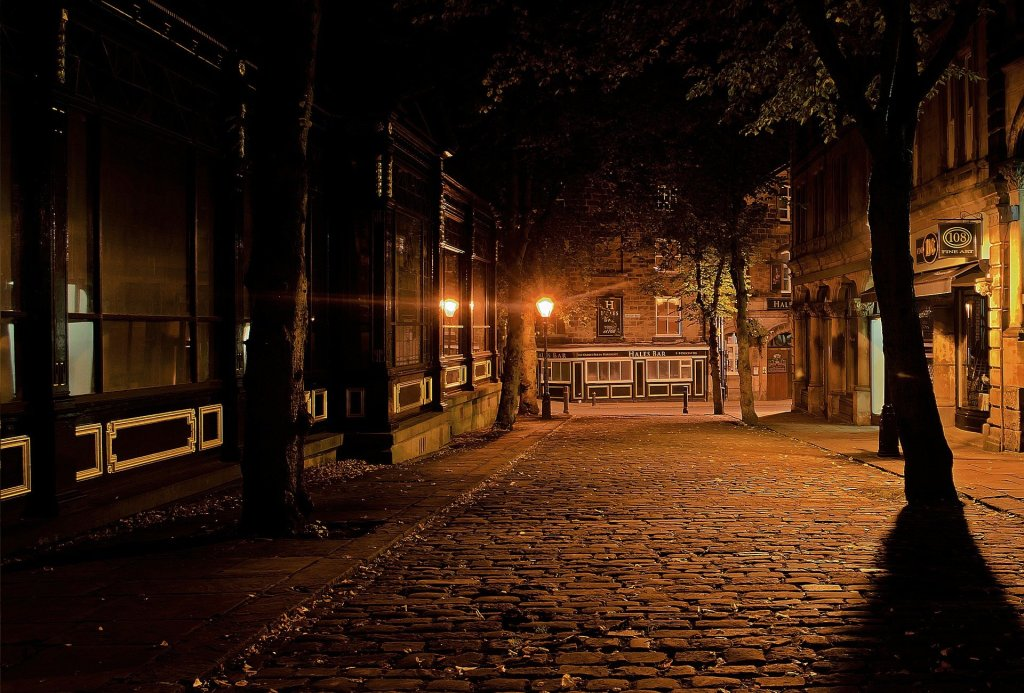 Night-time picture of cobblestone street. trees line the road.
